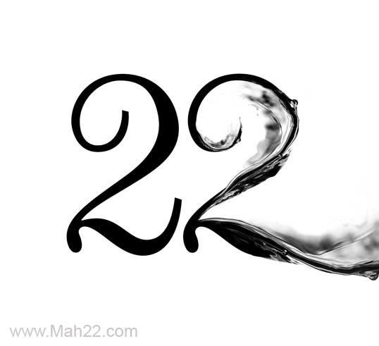 عدد 2 انگلیسی بسیار شبیه به اندام قو می باشد. یک نماد فرهنگی زیبا یک نماد فرهنگی زیبا برای شهر تهران و منطقه ۲۲ تهران                                  22