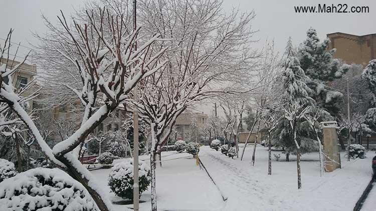 زمستان در منطقه 22 تهران. عکس های برف زمستانی در یکی از پارک های منطقه 22 تهران در میدان اتریش - یاس نهم - سرای محله گلستان زمستان زمستان در منطقه 22 تهران. عکس های برف زمستانی